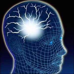 Beyninizi Keşfedin