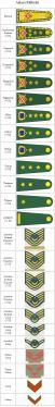 askeri-rutbe-siralamasi-1-51x374
